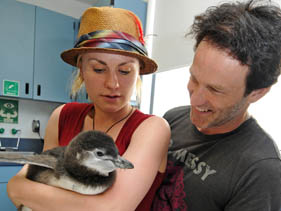 "SAN DIEGO, CA - JULY 26:  In this handout from SeaWorld San Diego, ""True Blood"" costars Anna Paquin and Stephen Moyer hold a two-month-old Magellanic penguin chick at SeaWorld San Diego's Penguin Encounter July 26, 2009 in San Diego, California.  (Photo by Bob Couey-SeaWorld via Getty Images) *** Local Caption *** Stephen Moyer;Anna Paquin"